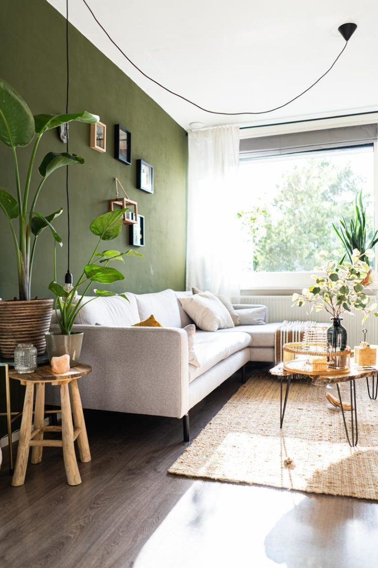 Czy chcesz kupić sobie doskonałe plisy okienne?